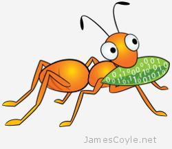 gluster-orange-ant